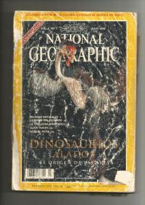 Ejemplar de National Geographic de 1998, con el magnífico Caudipteryx zoui de portada. De nuestros mayores tesoros de infancia.