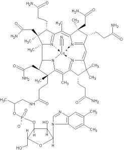 Estructura de la cobalamina (vitamina B12)