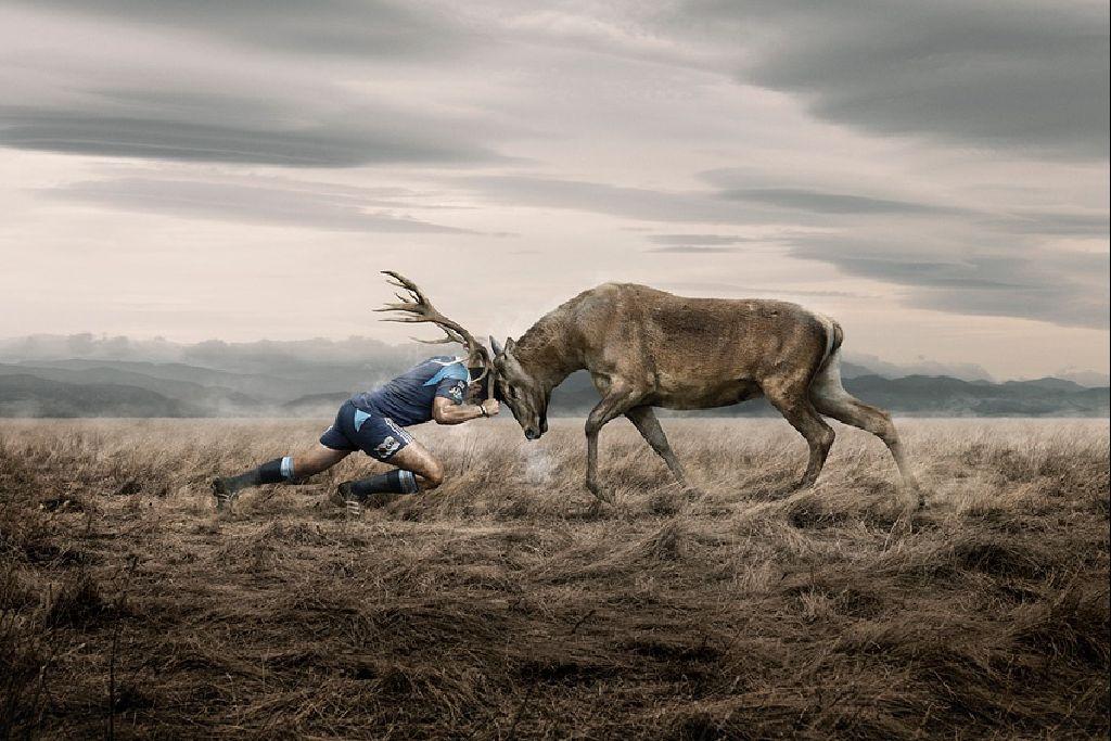 Por qu comparamos animales con personas magufobusters - Animales con personas apareandose ...