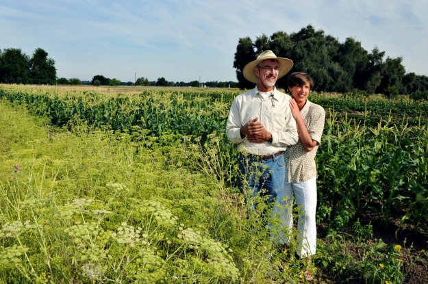 Pamela_Ronald_and_Raoul_Adamchak_on_the_UC_Davis_certified_organic_farm._Photo_credit_Pico_van_Houtryve,_picophotos