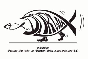 evolución_darwin_win